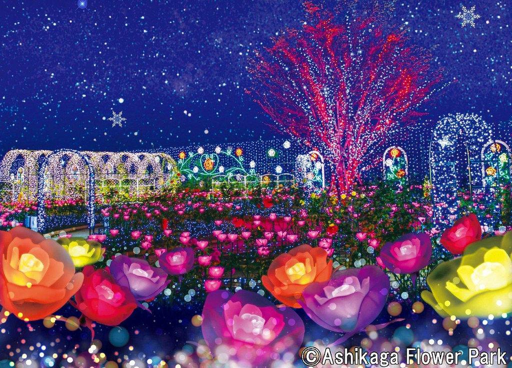 Ashikaga Flower Park Flower Fantasy