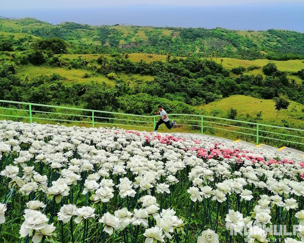The 16,000 Blossoms at Lintaon Park