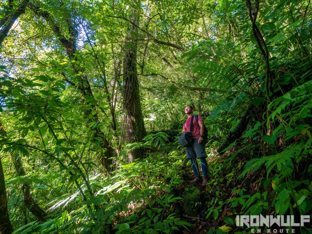 At Sitio Itum Trail at Mt Hibok-hibok