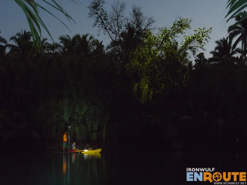 Firefly watching at Abatan River
