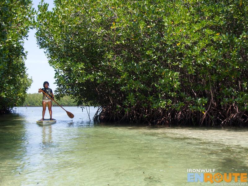 Entering Banacon Island mangrove